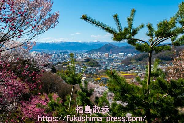 福島の花見山!桜の撮影スポット3選の画像
